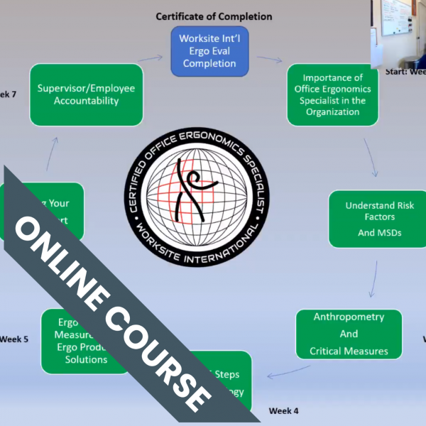 Ergonomics Training Course Review - Train The Ergonomics Evaluator